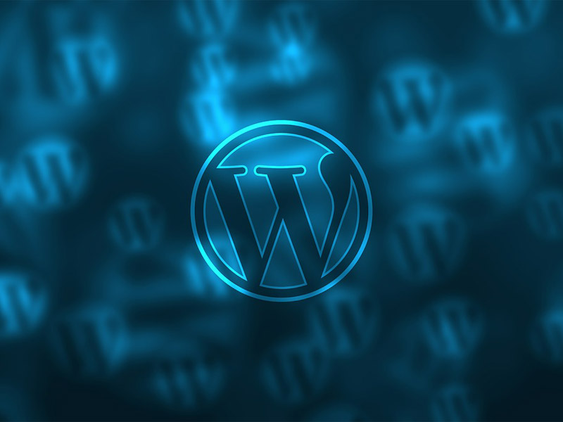Why WordPress Business Plan is The Best Choice for Creating Business Websites for E-Commerce
