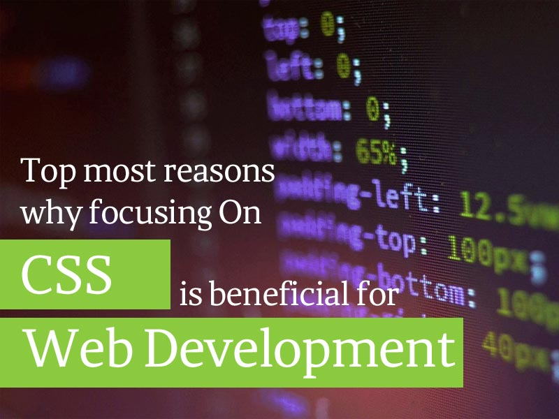 Top Most Reasons Why Focusing on CSS is Beneficial for Web Development