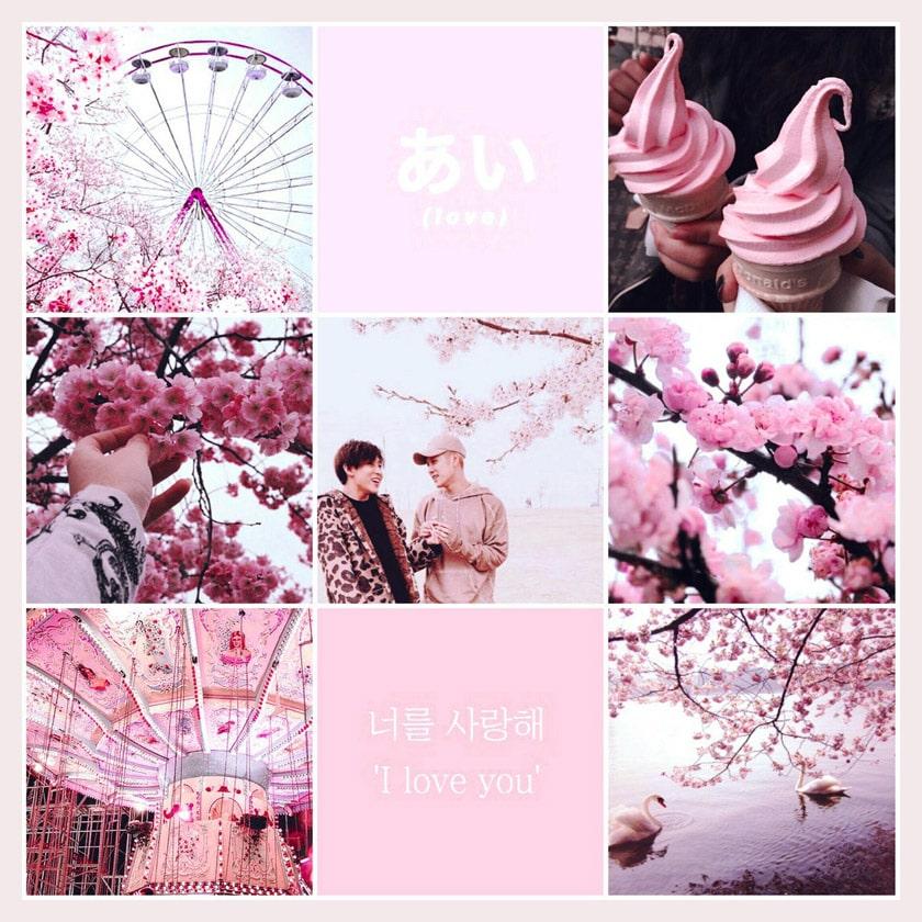 Jackbam Pink Aesthetic Moodboard