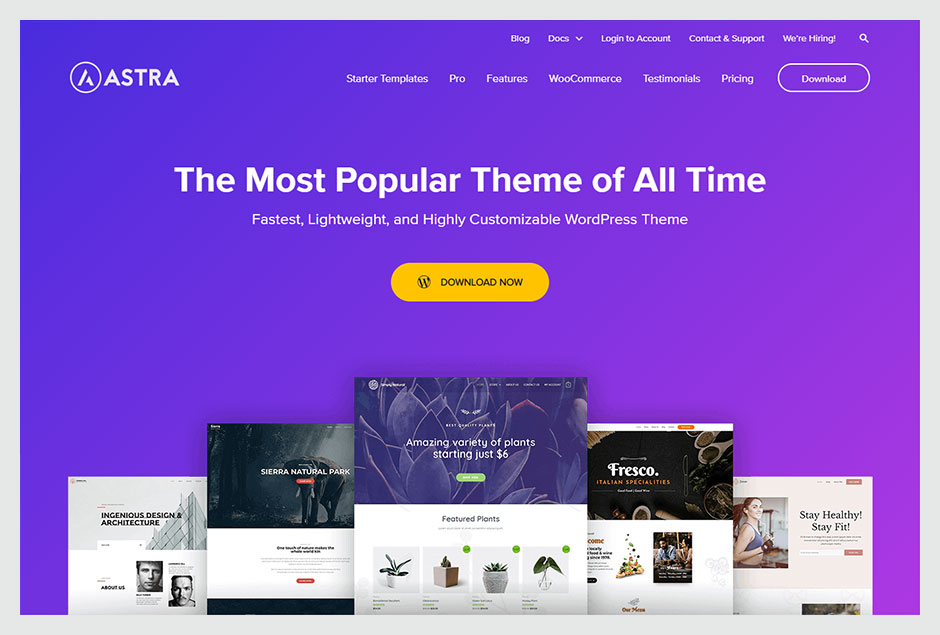 Astra - The Most Popular Theme